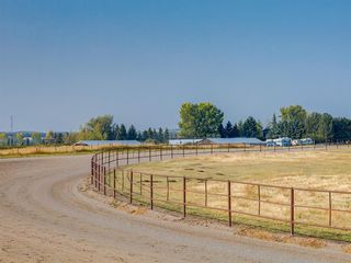 Photo 9: 276156 32 Street E: Rural Foothills County Agriculture for sale : MLS®# A1031383