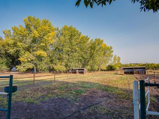 Photo 6: 276156 32 Street E: Rural Foothills County Agriculture for sale : MLS®# A1031383