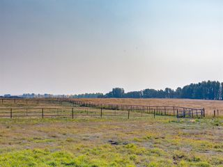 Photo 10: 276156 32 Street E: Rural Foothills County Agriculture for sale : MLS®# A1031383