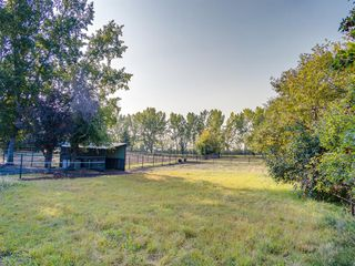 Photo 4: 276156 32 Street E: Rural Foothills County Agriculture for sale : MLS®# A1031383