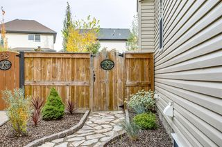 Photo 38: 24 CRANARCH Bay SE in Calgary: Cranston Detached for sale : MLS®# A1038877