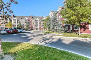 Photo 31: 1203 10 Prestwick Bay SE in Calgary: McKenzie Towne Apartment for sale : MLS®# A1041137
