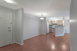 Photo 5: 1203 10 Prestwick Bay SE in Calgary: McKenzie Towne Apartment for sale : MLS®# A1041137