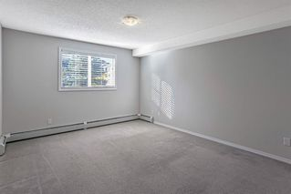 Photo 15: 1203 10 Prestwick Bay SE in Calgary: McKenzie Towne Apartment for sale : MLS®# A1041137