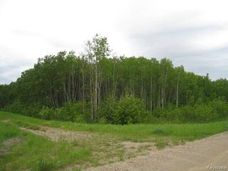 Photo 1: 0 108 Road West in DAUPHIN: Manitoba Other Residential for sale : MLS®# 1400429