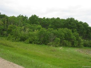 Photo 3: 0 108 Road West in DAUPHIN: Manitoba Other Residential for sale : MLS®# 1400429
