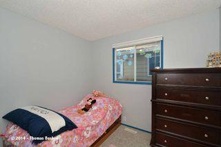 Photo 29: 23 Faldale CLOSE NE in Calgary: Falconridge House for sale : MLS®# C3640726
