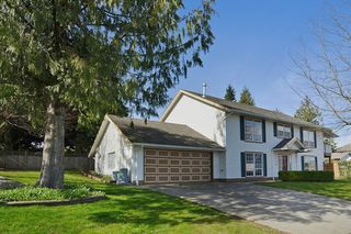 Photo 2: 2613 270B Street in Langley: Aldergrove Langley House for sale : MLS®# F1433982