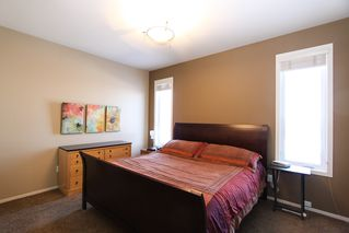 Photo 17: 23 Appletree Crescent in Winnipeg: Bridgwater Forest Residential for sale (1R)  : MLS®# 1702055