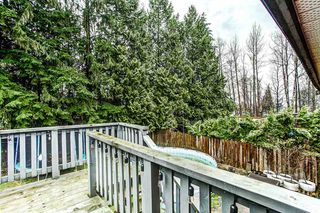 Photo 14: 20914 ROSEWOOD Place in Maple Ridge: Southwest Maple Ridge House for sale : MLS®# R2150995