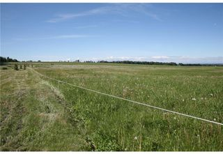 Photo 18: 4 4141 Twp Rd 340: Rural Mountain View County Land for sale : MLS®# C4123350