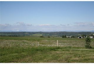Photo 4: 4 4141 Twp Rd 340: Rural Mountain View County Land for sale : MLS®# C4123350