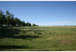 Photo 12: 4 4141 Twp Rd 340: Rural Mountain View County Land for sale : MLS®# C4123350