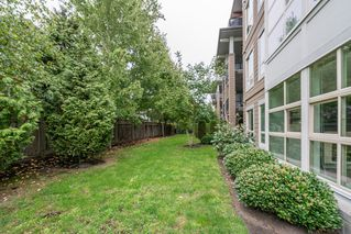 Photo 14: 118 6688 120 STREET in Surrey: West Newton Condo for sale : MLS®# R2210872