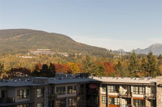 Photo 14: 801 3093 WINDSOR Gate in Coquitlam: New Horizons Condo for sale : MLS®# R2217424