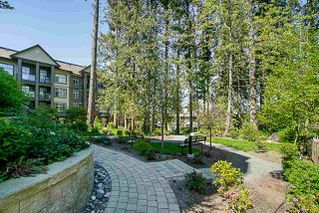 Photo 15: 317 2855 156 Street in Surrey: Grandview Surrey Condo for sale (South Surrey White Rock)  : MLS®# R2261980