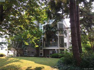 Photo 11: 301 720 Vancouver Street in VICTORIA: Vi Fairfield West Condo Apartment for sale (Victoria)  : MLS®# 397484