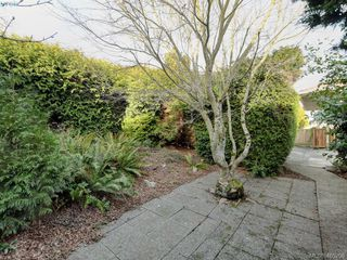 Photo 22: 3715 Doncaster Dr in VICTORIA: SE Cedar Hill House for sale (Saanich East)  : MLS®# 805156