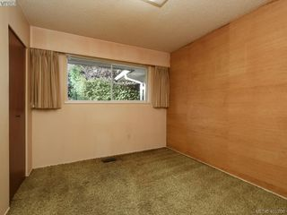 Photo 12: 3715 Doncaster Dr in VICTORIA: SE Cedar Hill Single Family Detached for sale (Saanich East)  : MLS®# 805156