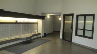 Photo 15: 7305 7327 South Tervillegar DR NW in Edmonton: Zone 14 Condo for sale : MLS®# E4132363