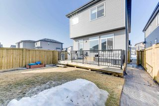 Photo 28: 18147 75 Street in Edmonton: Zone 28 House for sale : MLS®# E4148799