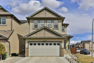 Photo 30: 134 SKYVIEW RANCH Street NE in Calgary: Skyview Ranch Detached for sale : MLS®# C4238706