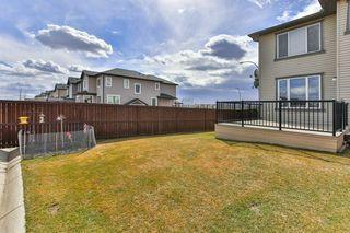 Photo 28: 134 SKYVIEW RANCH Street NE in Calgary: Skyview Ranch Detached for sale : MLS®# C4238706