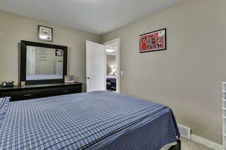 Photo 23: 134 SKYVIEW RANCH Street NE in Calgary: Skyview Ranch Detached for sale : MLS®# C4238706