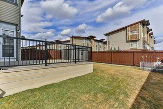 Photo 26: 134 SKYVIEW RANCH Street NE in Calgary: Skyview Ranch Detached for sale : MLS®# C4238706