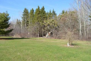 Photo 7: 3914 Highway 326 in Brule: 103-Malagash, Wentworth Residential for sale (Northern Region)  : MLS®# 201908792