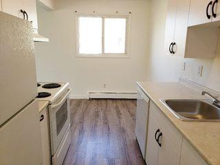 Photo 7: 204 9120 106 Avenue in Edmonton: Zone 13 Condo for sale : MLS®# E4156624