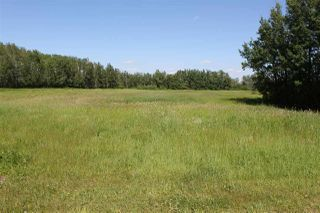 Photo 30: 6303 TWP RD 532: Rural Parkland County House for sale : MLS®# E4162281