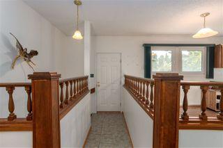 Photo 15: 11131 23A Avenue in Edmonton: Zone 16 House for sale : MLS®# E4176903