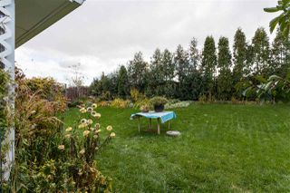 Photo 28: 11131 23A Avenue in Edmonton: Zone 16 House for sale : MLS®# E4176903