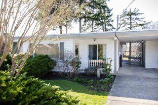 "Main Photo: 159 65B Street in Delta: Boundary Beach House for sale in ""BOUNDARY BAY"" (Tsawwassen)  : MLS®# R2442877"