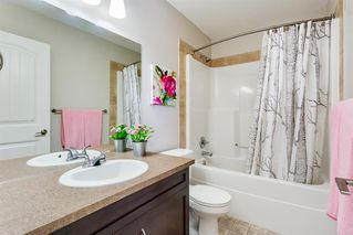 Photo 24: 214 WILLIAMSTOWN Green NW: Airdrie Detached for sale : MLS®# A1018478
