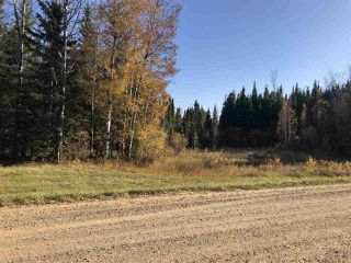 Photo 4: TWP 623A RR 231: Rural Athabasca County Rural Land/Vacant Lot for sale : MLS®# E4216016