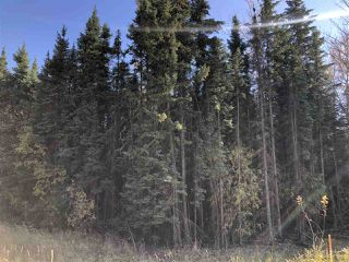 Photo 6: TWP 623A RR 231: Rural Athabasca County Rural Land/Vacant Lot for sale : MLS®# E4216016