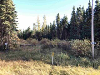 Photo 3: TWP 623A RR 231: Rural Athabasca County Rural Land/Vacant Lot for sale : MLS®# E4216016