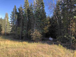 Photo 11: TWP 623A RR 231: Rural Athabasca County Rural Land/Vacant Lot for sale : MLS®# E4216016