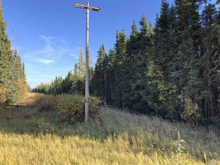 Photo 5: TWP 623A RR 231: Rural Athabasca County Rural Land/Vacant Lot for sale : MLS®# E4216016