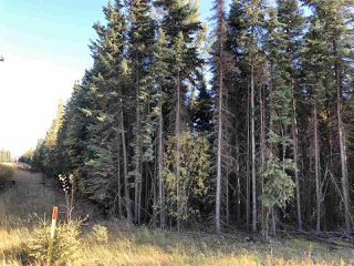 Photo 8: TWP 623A RR 231: Rural Athabasca County Rural Land/Vacant Lot for sale : MLS®# E4216016
