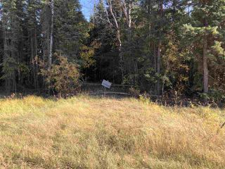 Photo 9: TWP 623A RR 231: Rural Athabasca County Rural Land/Vacant Lot for sale : MLS®# E4216016