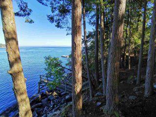 Photo 32: 578 ARBUTUS Drive: Mayne Island House for sale (Islands-Van. & Gulf)  : MLS®# R2504459