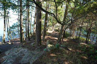 Photo 28: 578 ARBUTUS Drive: Mayne Island House for sale (Islands-Van. & Gulf)  : MLS®# R2504459