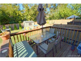 Photo 9: 3372 Shelbourne St in VICTORIA: SE Cedar Hill Half Duplex for sale (Saanich East)  : MLS®# 707040