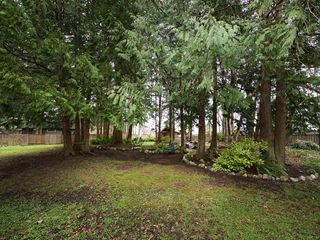 Photo 19: 5674 9 Avenue in Delta: Tsawwassen East House for sale (Tsawwassen)  : MLS®# R2041484