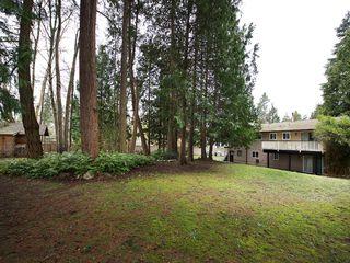 Photo 20: 5674 9 Avenue in Delta: Tsawwassen East House for sale (Tsawwassen)  : MLS®# R2041484
