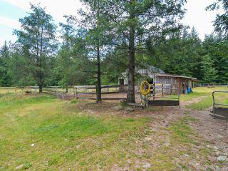 Photo 55: 2390 Humphrey Rd in MERVILLE: CV Merville Black Creek House for sale (Comox Valley)  : MLS®# 738200