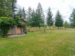 Photo 57: 2390 Humphrey Rd in MERVILLE: CV Merville Black Creek House for sale (Comox Valley)  : MLS®# 738200